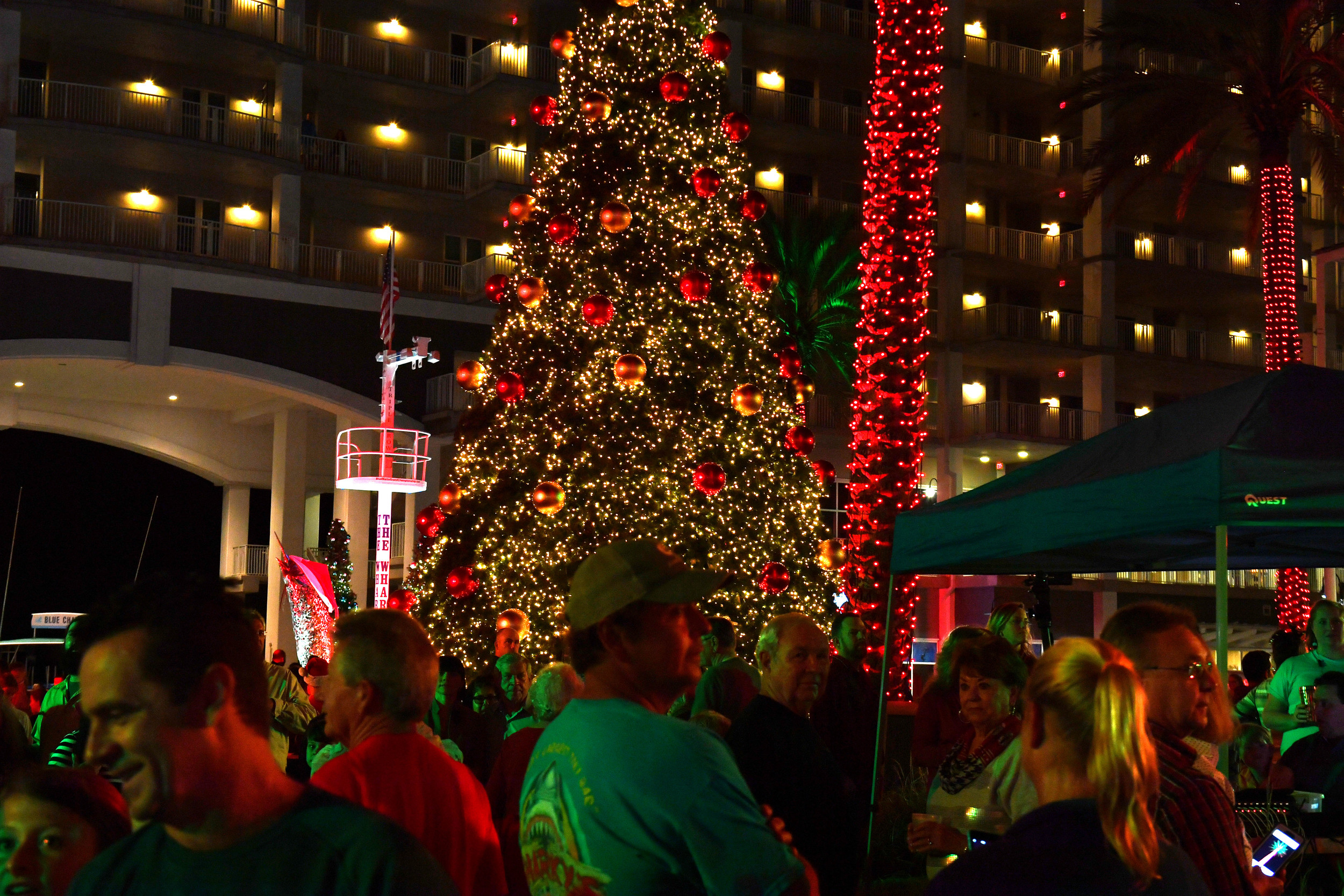 Scenes from the City of Orange Beach tree lighting at ... : city of orange tree lighting - azcodes.com