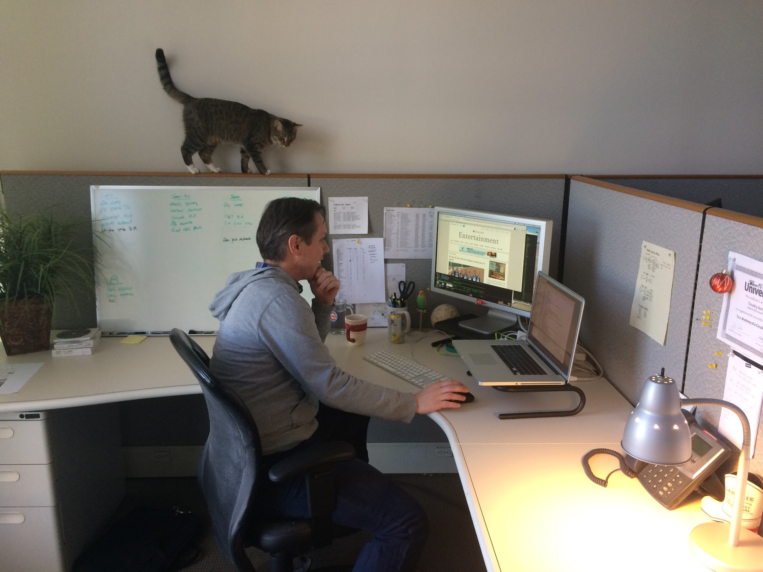 Tim Benson, our lead programmer, works on building out a new site while Charlotte strolls by above.