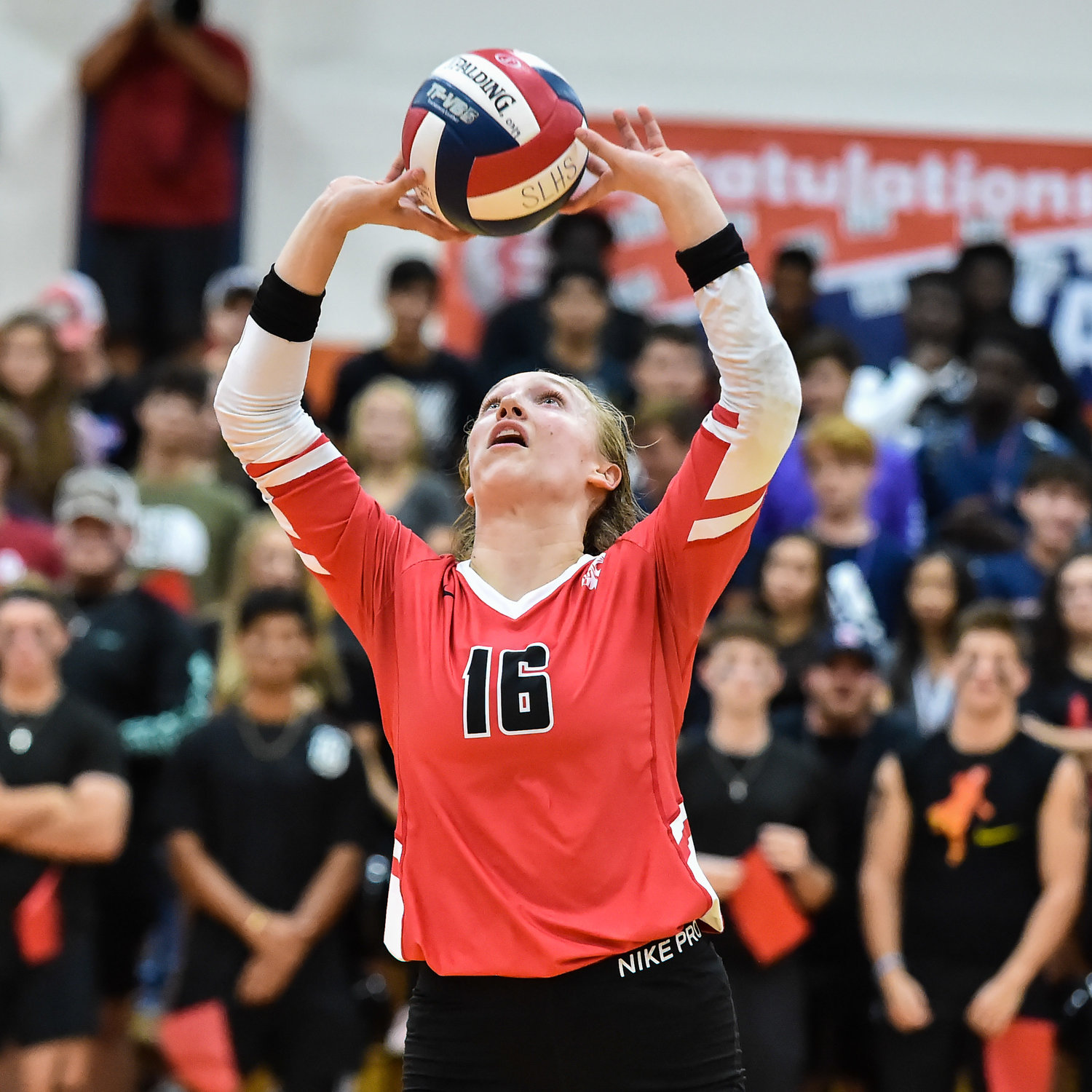 Katy Tx. Sept 24, 2019:  Katy's Maddie Waak (16) sets up a shot during a conference high school volleyball game between Katy and Seven Lakes at SLHS.  (Photo by Mark Goodman / Katy Times)