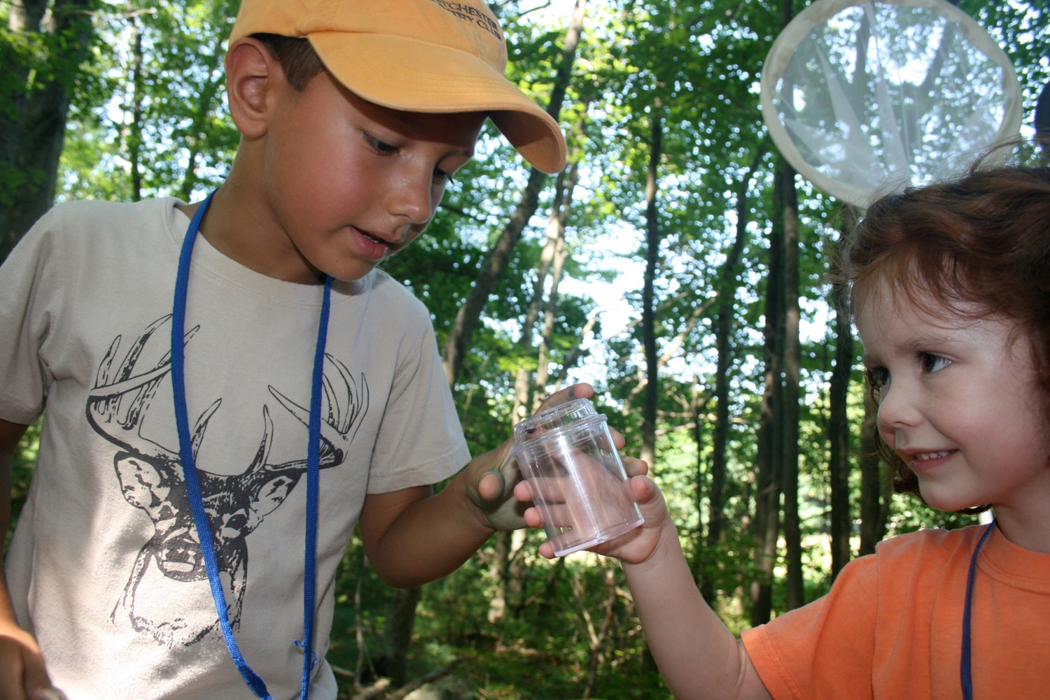 Bring the kids and hunt for creatures big and small at the Caratunk BioBlitz!