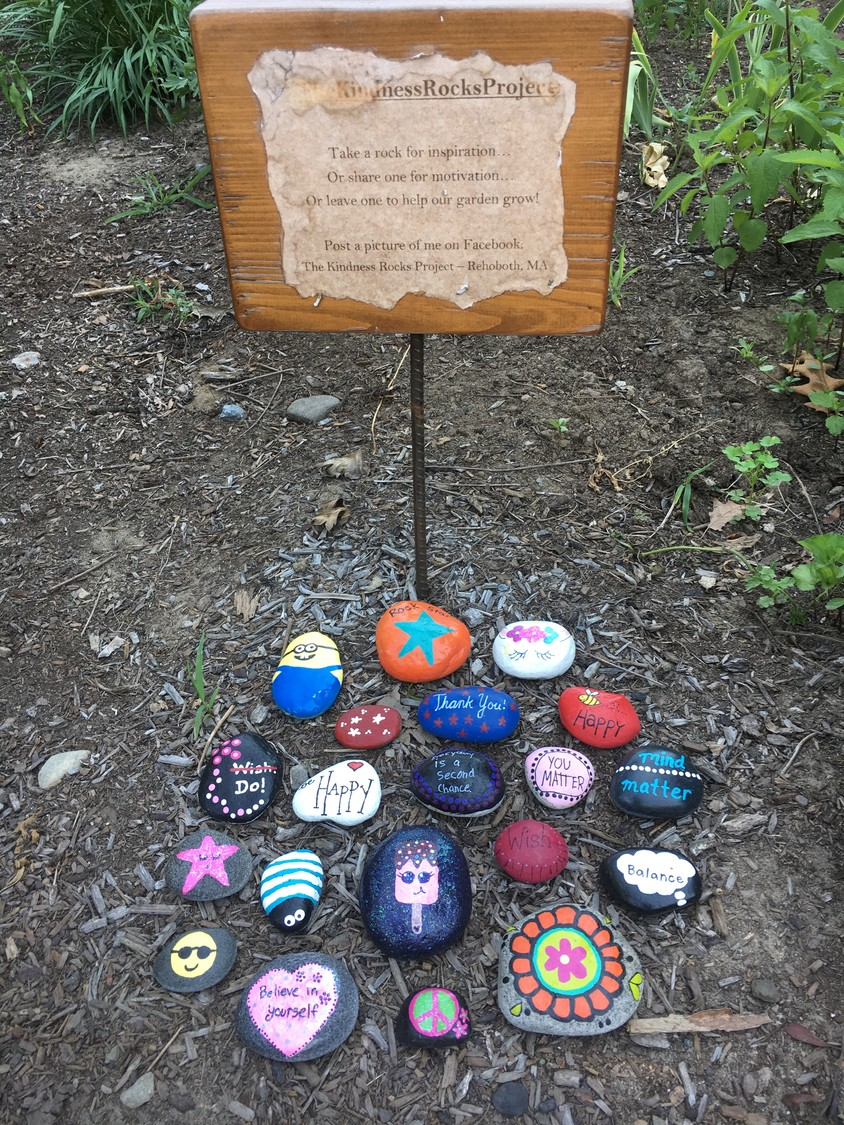 The Kindness Rocks Project