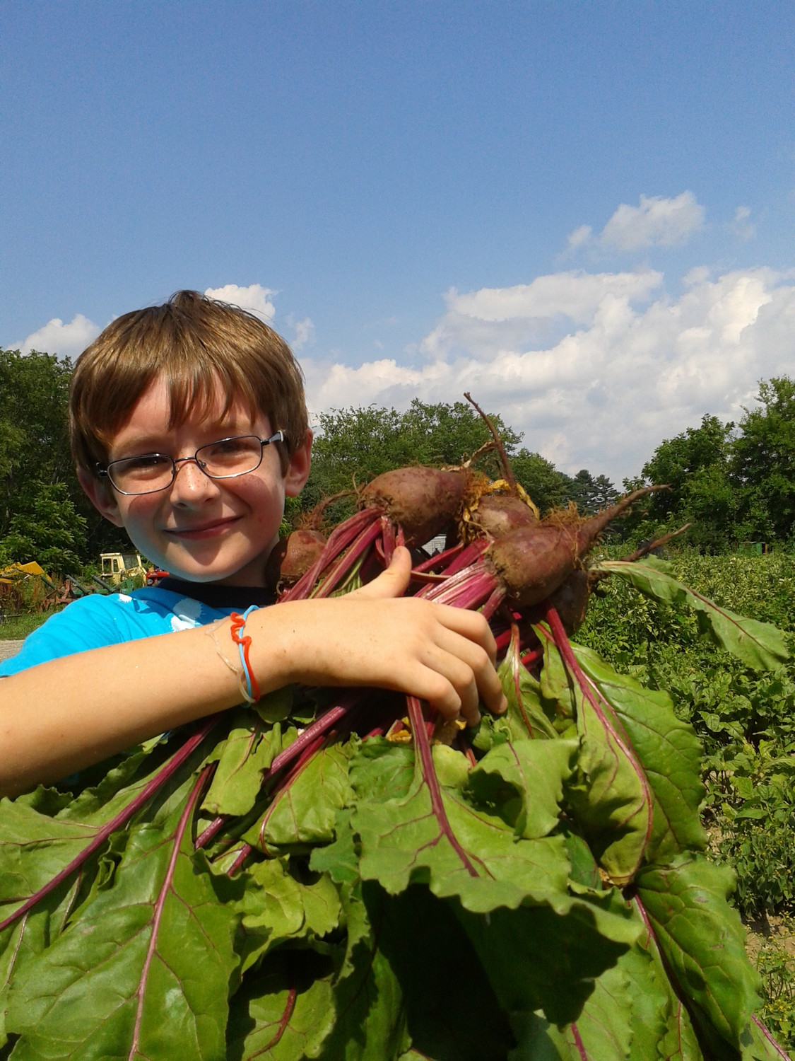 Val Souza's nephew with newly harvested beets