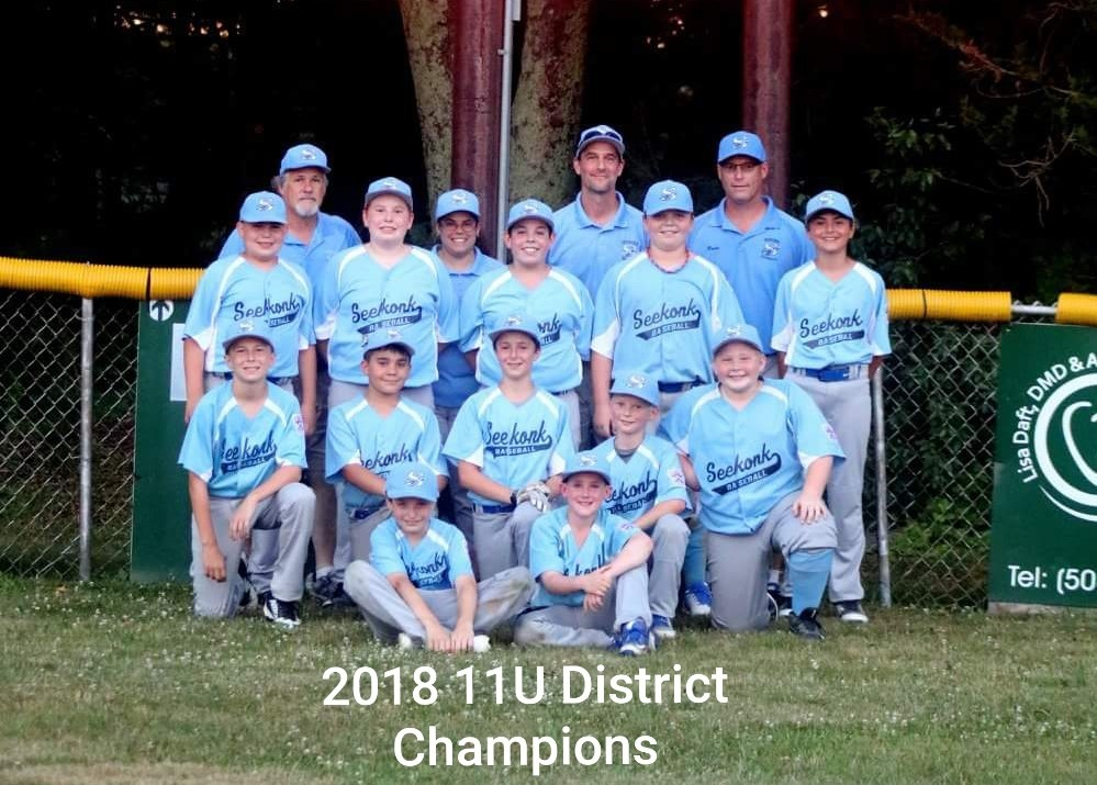 11U All Stars - Little League District Champions
