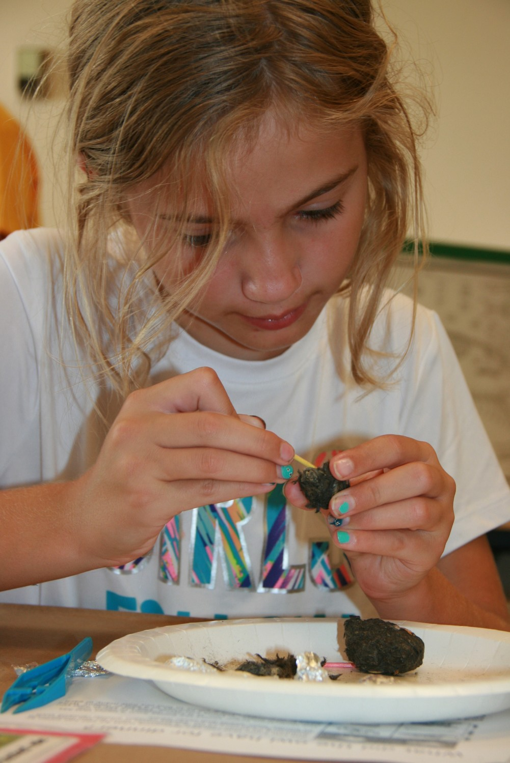 December School Vacation Week, Owl Pellet Dissections at Audubon.