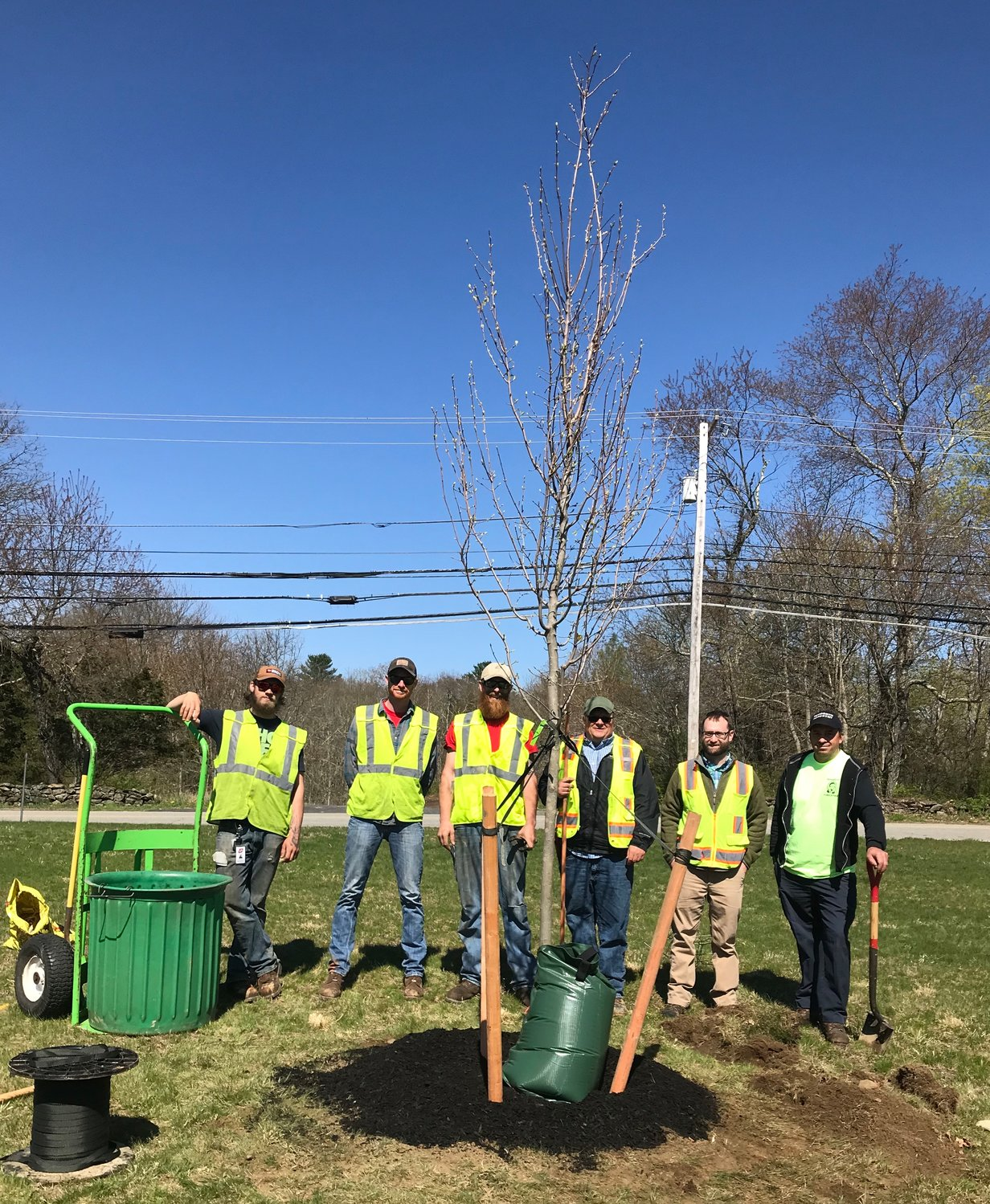 Rehoboth COA received Donated Trees from National Grid