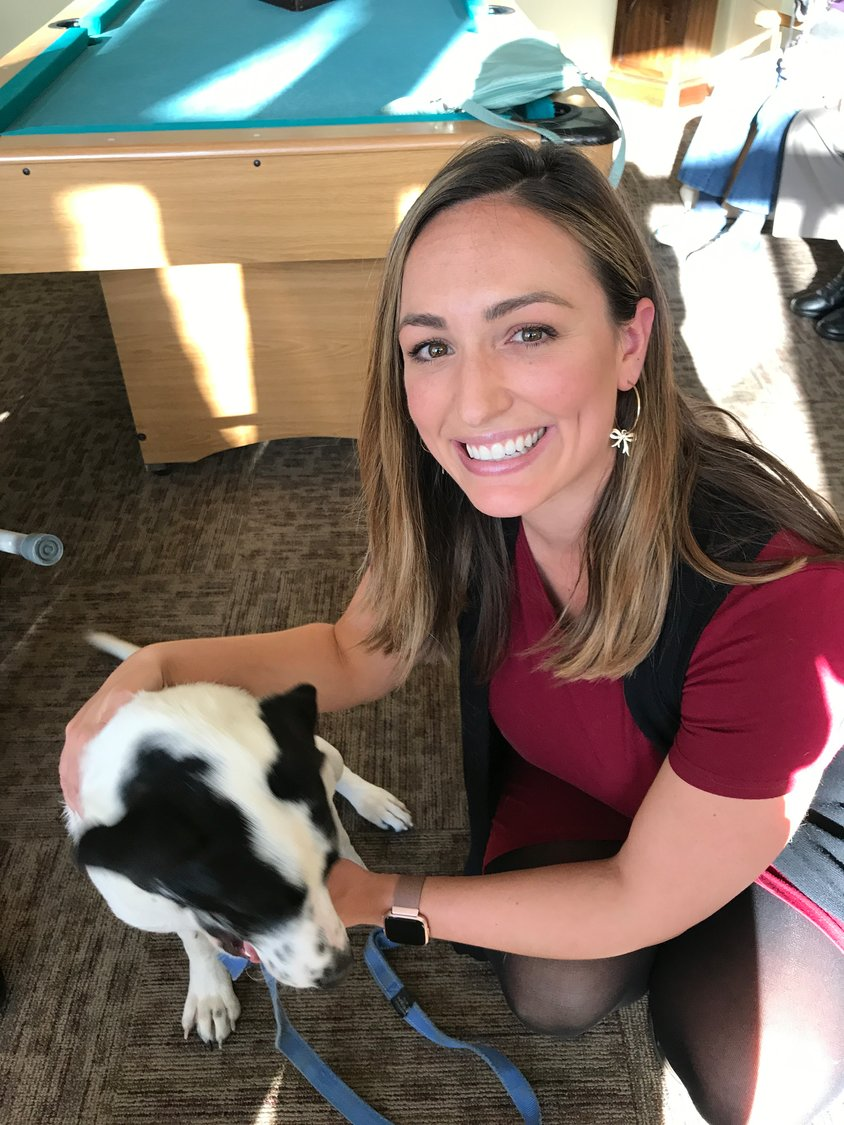 ABC 6 News Anchor Alana Cerrone and RISPCA dog Magnolia pictured together while visiting residents at Aldersbridge Communities in East Provience.