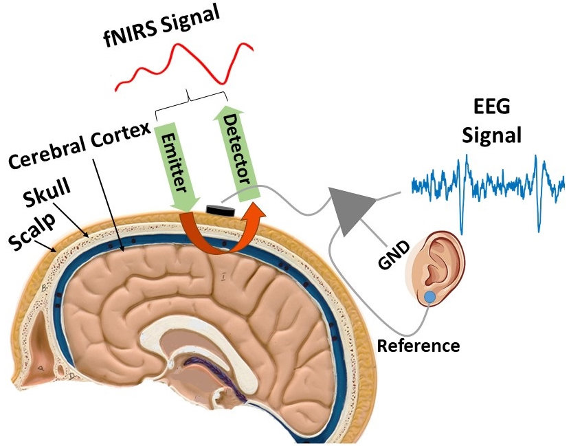 A combination of EEG and fNIRS signals are used to collect more accurate readings.