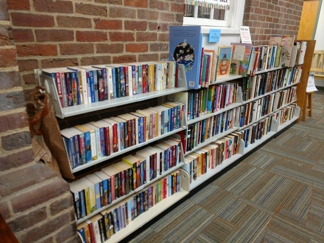 Friends of the Library offer hundreds of books for $1 or less at the Never-Ending Book Sale at Weaver Library and Riverside Library.