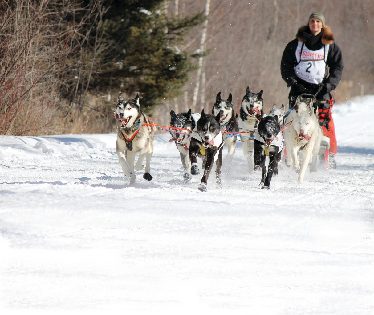 Jennifer Freking, of Finland,  won the 10-dog 60-mile WolfTrack Classic in six hours, 20 minutes.