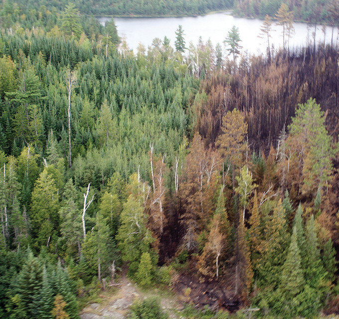 A brown swath is evidence of the recently controlled Knife Lake Fire