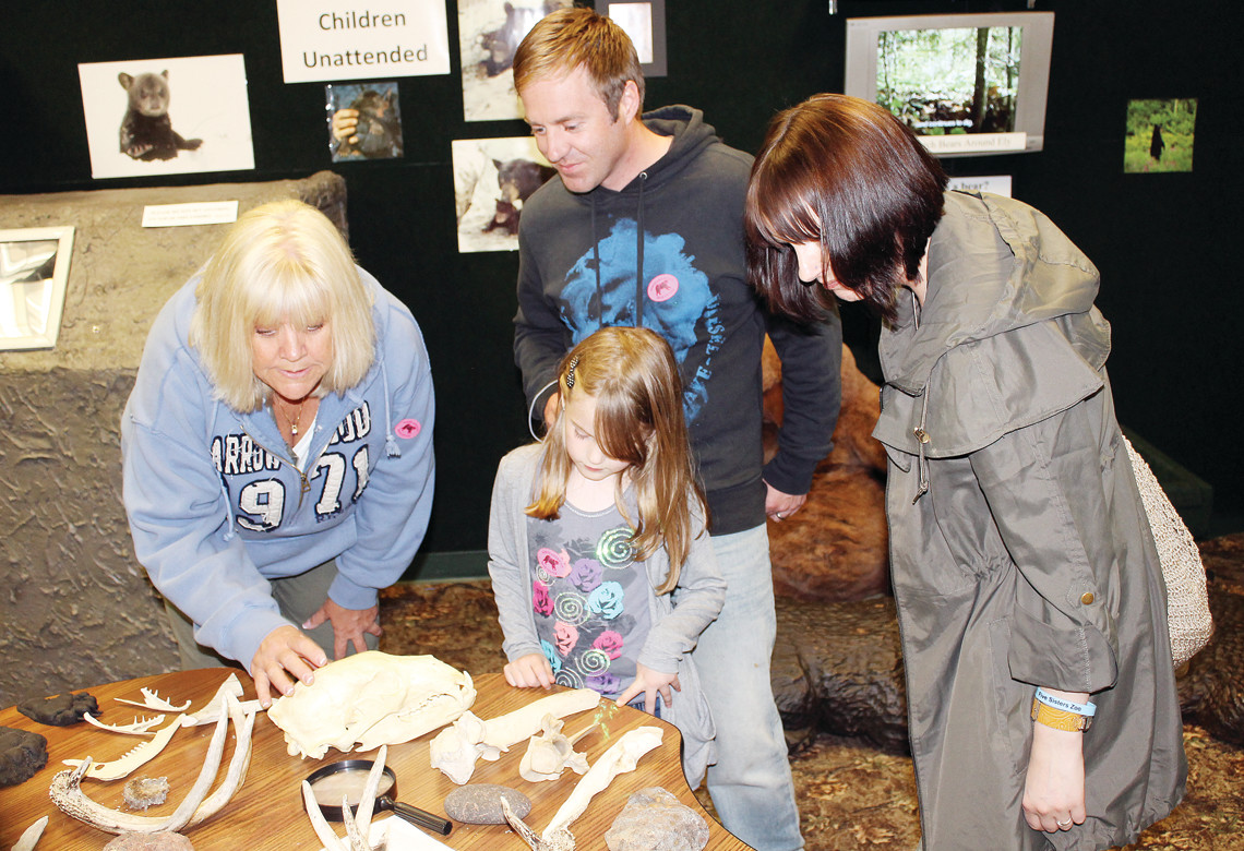 Visitors to the North American Bear Center outside of Ely inspect skulls and bone fragments.