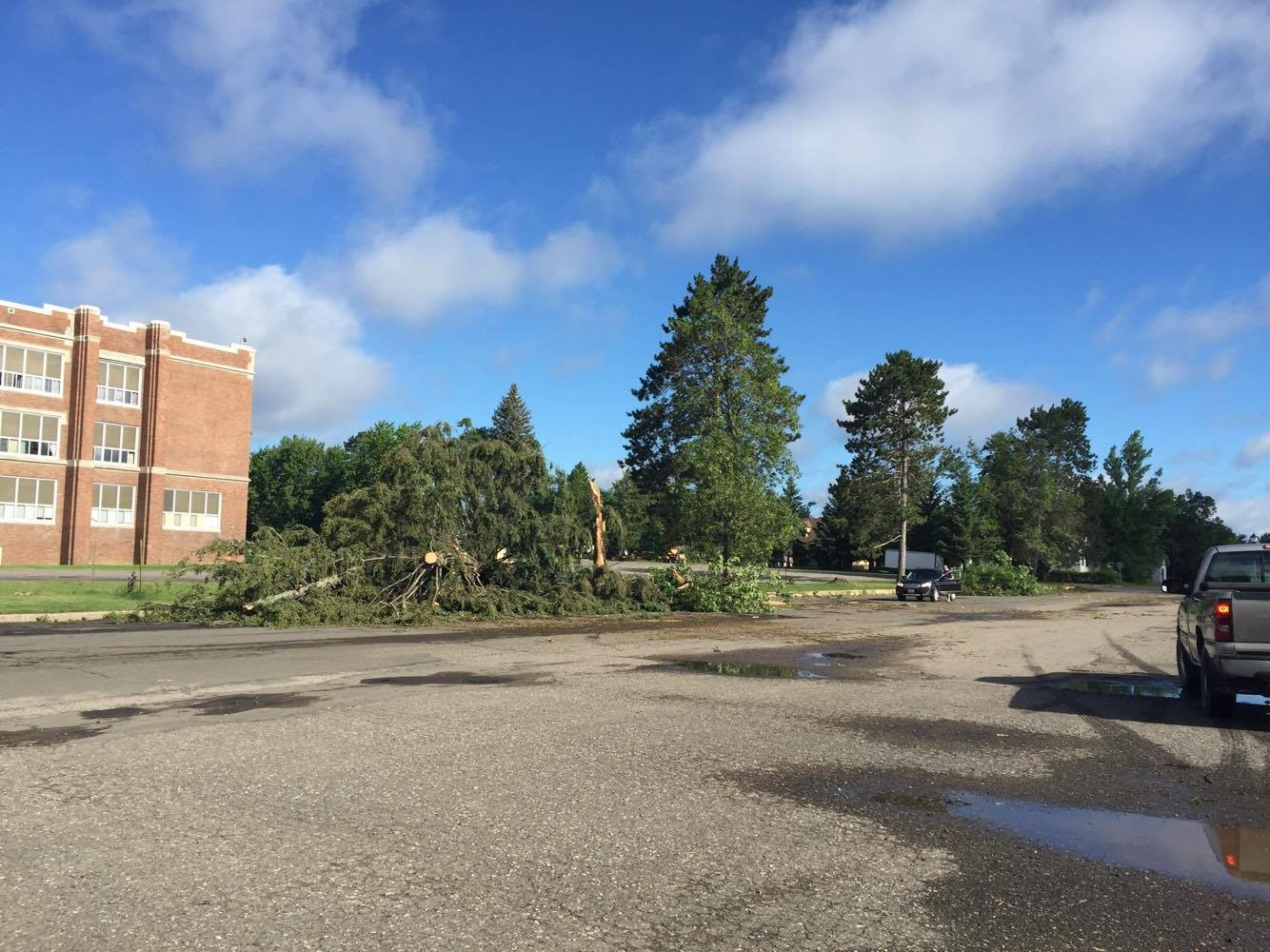 Trees down by the Ely school