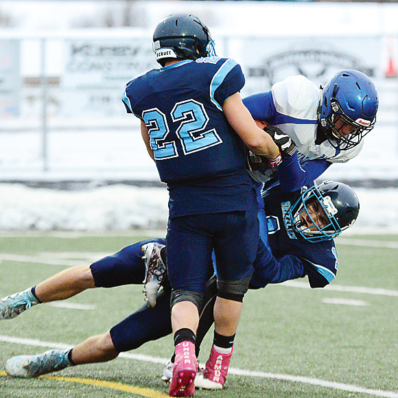 Grizzlies 
