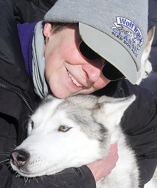 Local musher Nancy Ensley was in Whiteside Park with her Siberian Husky Kazoo and other members of her dog team recently, drumming up attention for the upcoming WolfTrack event.