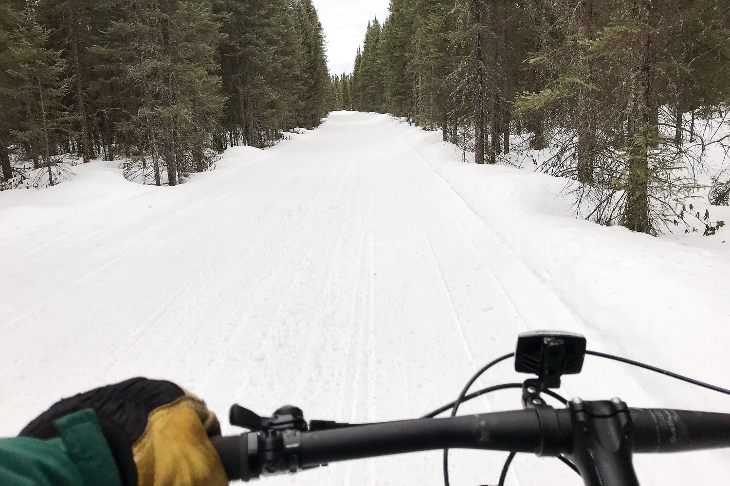 The view from the seat of the author's fat tire bike while riding along the Arrowhead Trail near Cook recently.