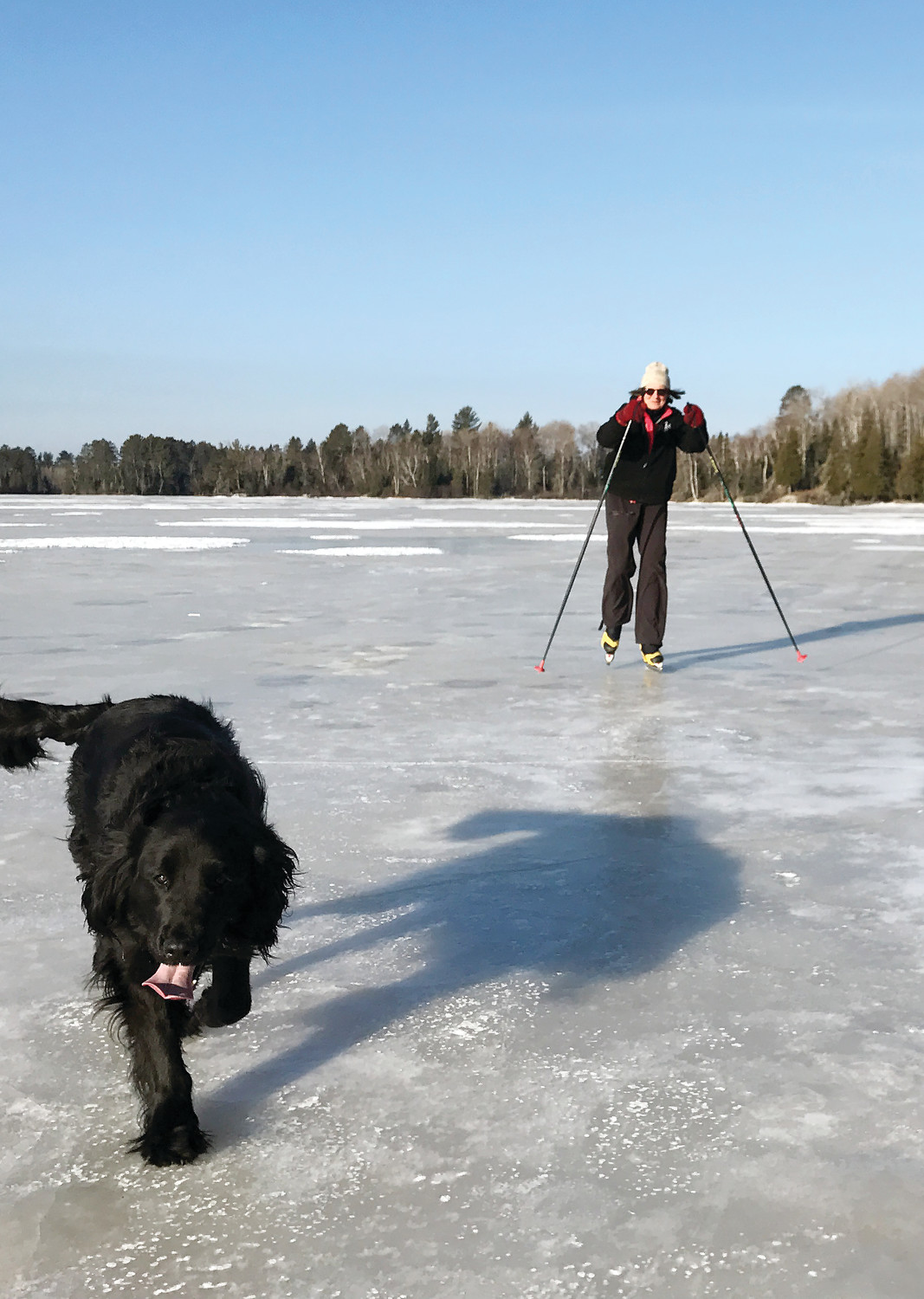 Mary Shedd, of Tower, uses Nordic skates on late season ice last April. Her dog, Ruckus, managed without skates.