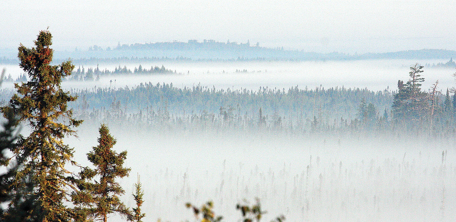 A recent morning view across the Lost Lake Swamp