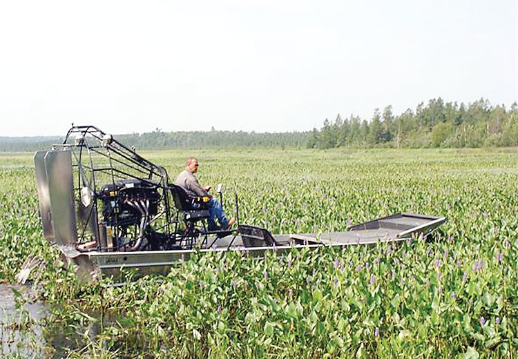 An airboat with cutting blades works on a dense patch of pickerel weed.