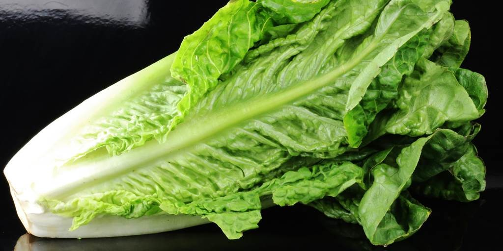 Avoid eating romaine lettuce after E. Coli outbreak in US, Canada