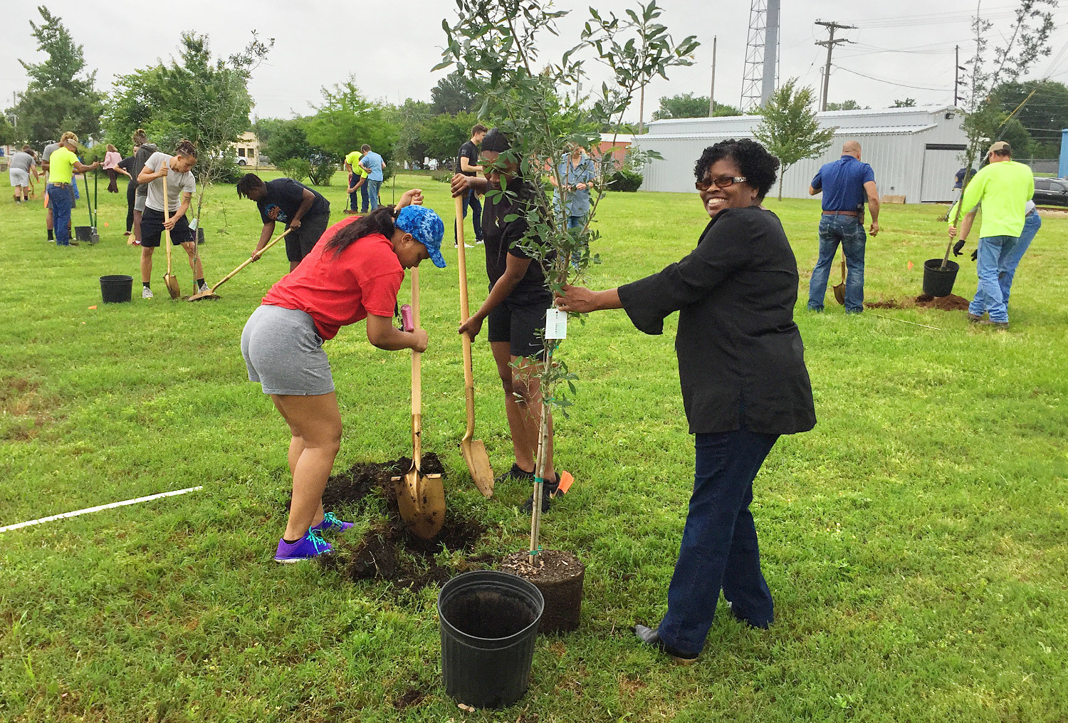 Mineola Rotary Club with Mineola High School seniors, city organization leaders and staff planted 20 live oak trees in the Iron Horse Square area Monday. The shade from these trees will provide for generations of park and mini train riders.