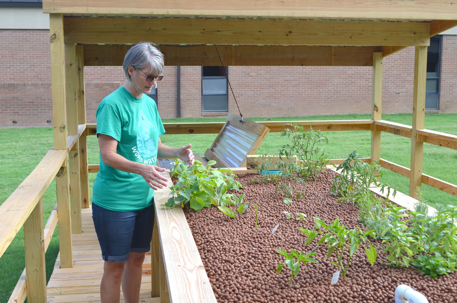 Mineola seventh-grade science teacher Susan Witt observes vegetables growing at an aquaponics station, the newest addition to the MISD Outdoor Science Center. At the side of the garden is the tank containing perch caught at Spring Lake in Mineola. (Monitor photo by Hank Murphy)
