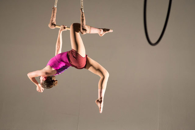 "Chestnut Hill native Lauren Rile Smith founded Tangle, an eight-woman aerial dance company that will perform ""Loop,"" a circus-theater show, as part of the Philadelphia FringeArts Festival on Sept. 18 and 19, 8 p.m., and Sept. 20, 3 and 8 p.m., at Philadelphia Soundstage, 1600 N. Broad St. (Seen here is Tangle member Tiffany Holder (Photos by Anne Saint Peter)"