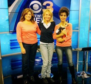 """TV reporter Carol Erickson talks with Sam's Hope on an """"Ask the Vet"""" segment on Saturday, Nov. 16, 2013, on CBS-TV, Channel 3. From left are Denise D'Ascenzo, Erickson and Marianne Iaquinto, who is holding Coco, the first vet care grant recipient for Sam's Hope. (Photo by Tony Iaquinto)"""