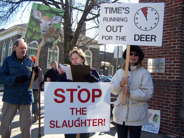 Chestnut Hill area residents Jay Roberts (from left), Mary Ann Baron and Christina Kobland were among those who have protested the slaughter of deer that takes place every winter in Wissahickon Park. The protest took place at the corner of Gravers Lane and Germantown Avenue for two hours.