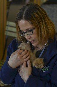 Susan Jones, a Brenda's Cat Rescue volunteer, cuddles two newborn kittens, hoping to find them loving homes.