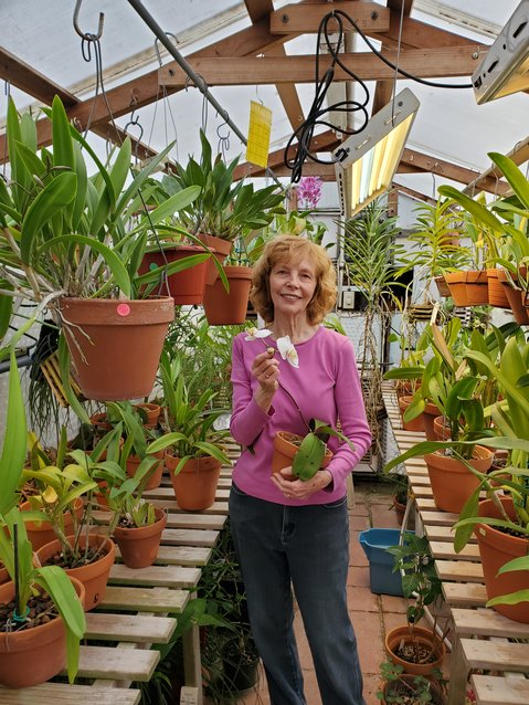 Valerie in the greenhouse with rescued Phalaenopsis