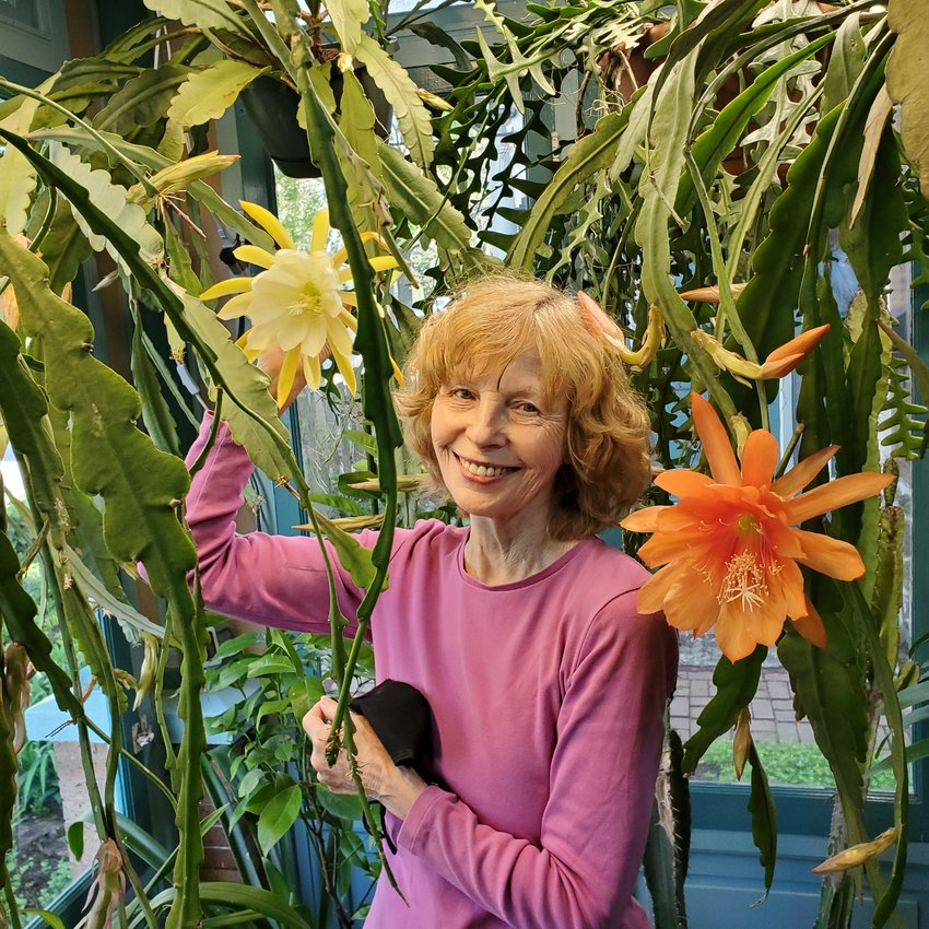 Valerie with a giant cactus flower blooming on our enclosed porch.