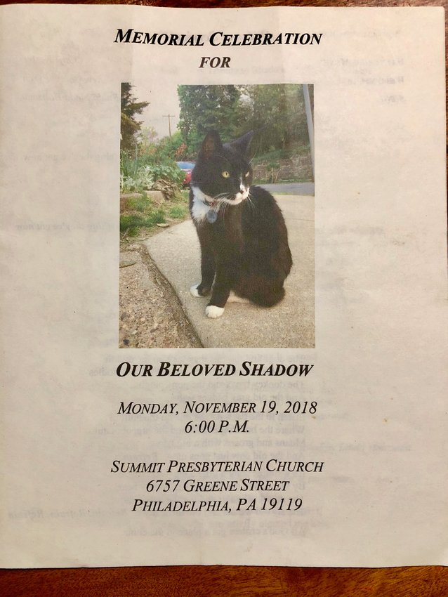 """Over 100 mourners showed up for a memorial service at Summit Presbyterian Church in West Mt. Airy to honor Shadow, the beloved """"Church Cat."""""""
