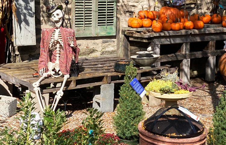 Halloween at Laurel Hill Gardens.