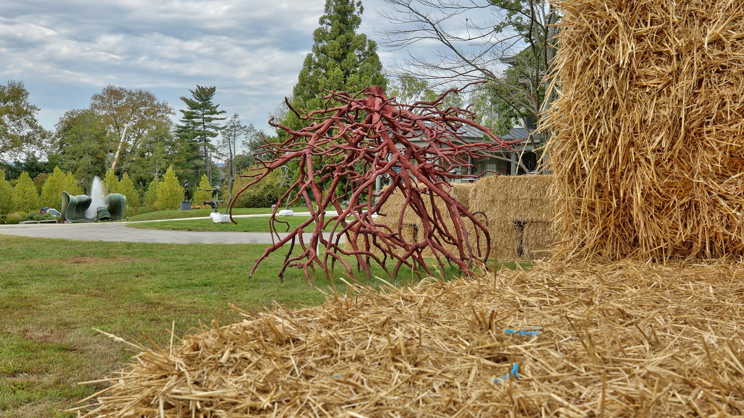 "Woodmere's annual straw maze has been reimagined into a socially distanced learning experience. Center here is Steve Tobin's sculpture ""Alter Root."" Behind (from left) are Harry Bertoia's 