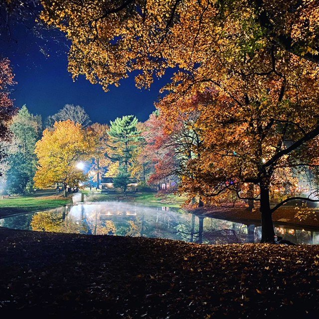 Pastorius Park at night during HBO filming at the park in November. (Photo by Cindy Harvey-Benzing)