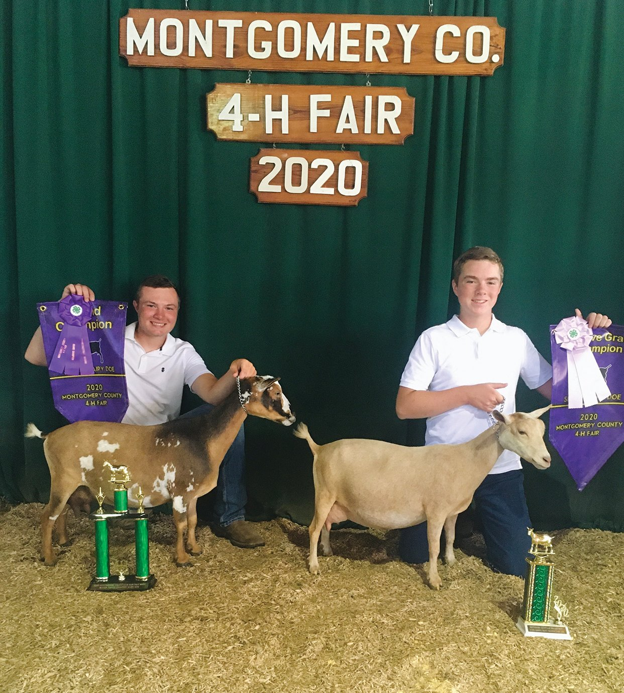 Drew Runyan, left, and Brent Runyan showoff their Grand Champion and Reserve Grand Champion dairy does, respectively, on July 21 at the 2020 Montgomery County 4-H Fair.