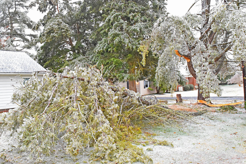 The area's residents struggled through another round of rough winter weather last week, as ice tore down branches and made roads dangerous.