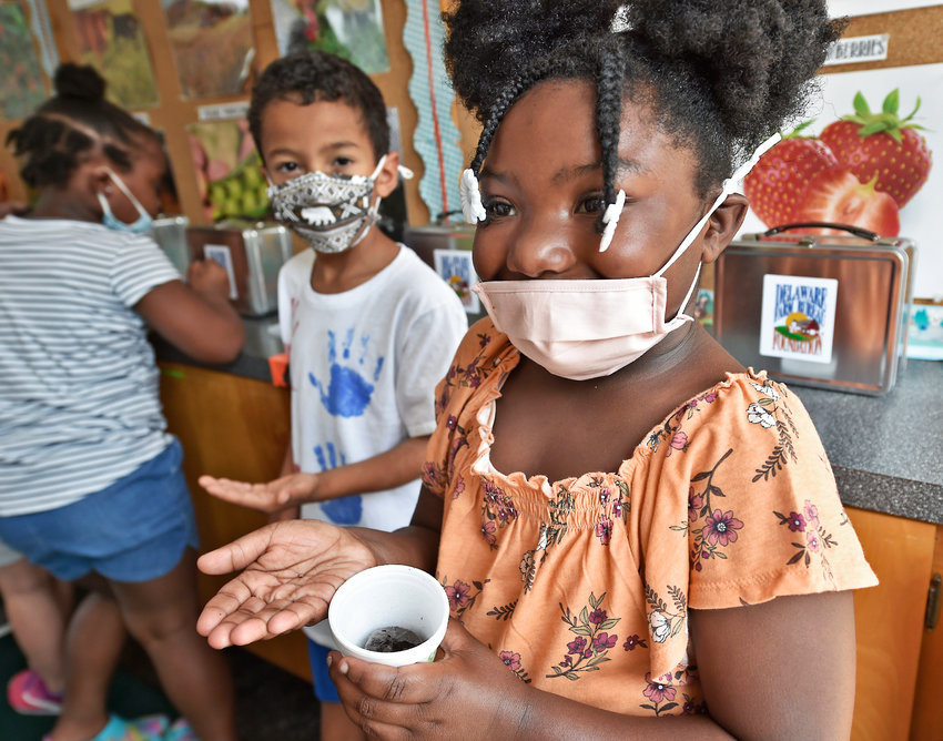 Serenity Mann, 6, prepares to plant her tiny radish seed in a cup, inside the traveling Delaware Farm Bureau Agricultural Lab making a stop on Wednesday at the Boys & Girls Clubs of Delaware in Georgetown.