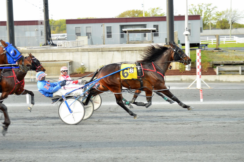 Local horse Jack's Legend N (3/1, Pat Berry) drew the coveted rail for tonight's $150,000 Bobby Quillen Memorial and is riding the wave of a two-race win streak over the track despite outside posts for trainer and co-owner Josh Green.