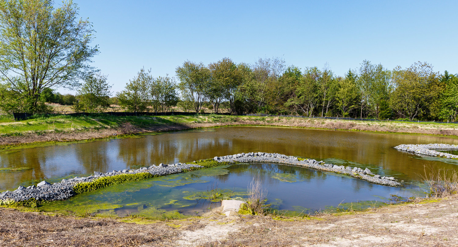 The retention pond beside Caitlin and Brian Depelteau's one-time home.
