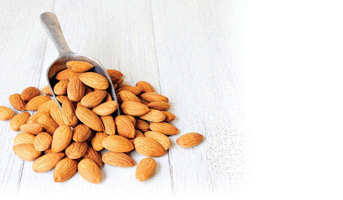 Almond background with copy space