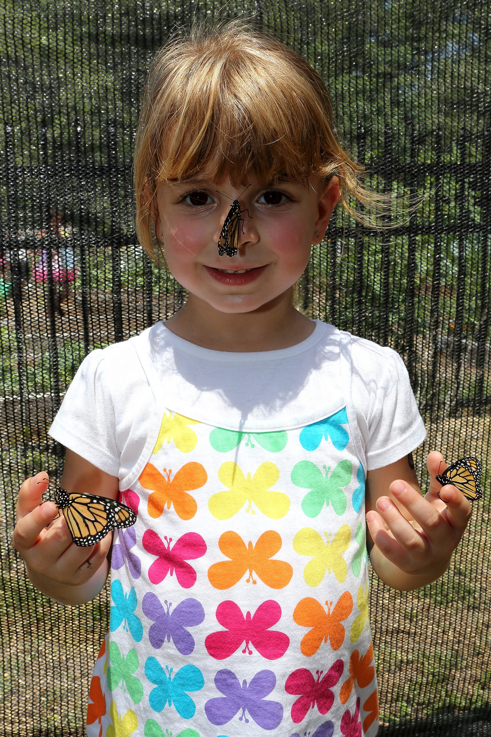 The 13th annual Butterfly Festival is a pretty fun treat for the whole family – featuring crafts, food and drink, live music, a butterfly release and kids' activities – from 10 a.m.-4 p.m. on April 27 at Tree Hill Nature Center, on Lone Star Road in Arlington.