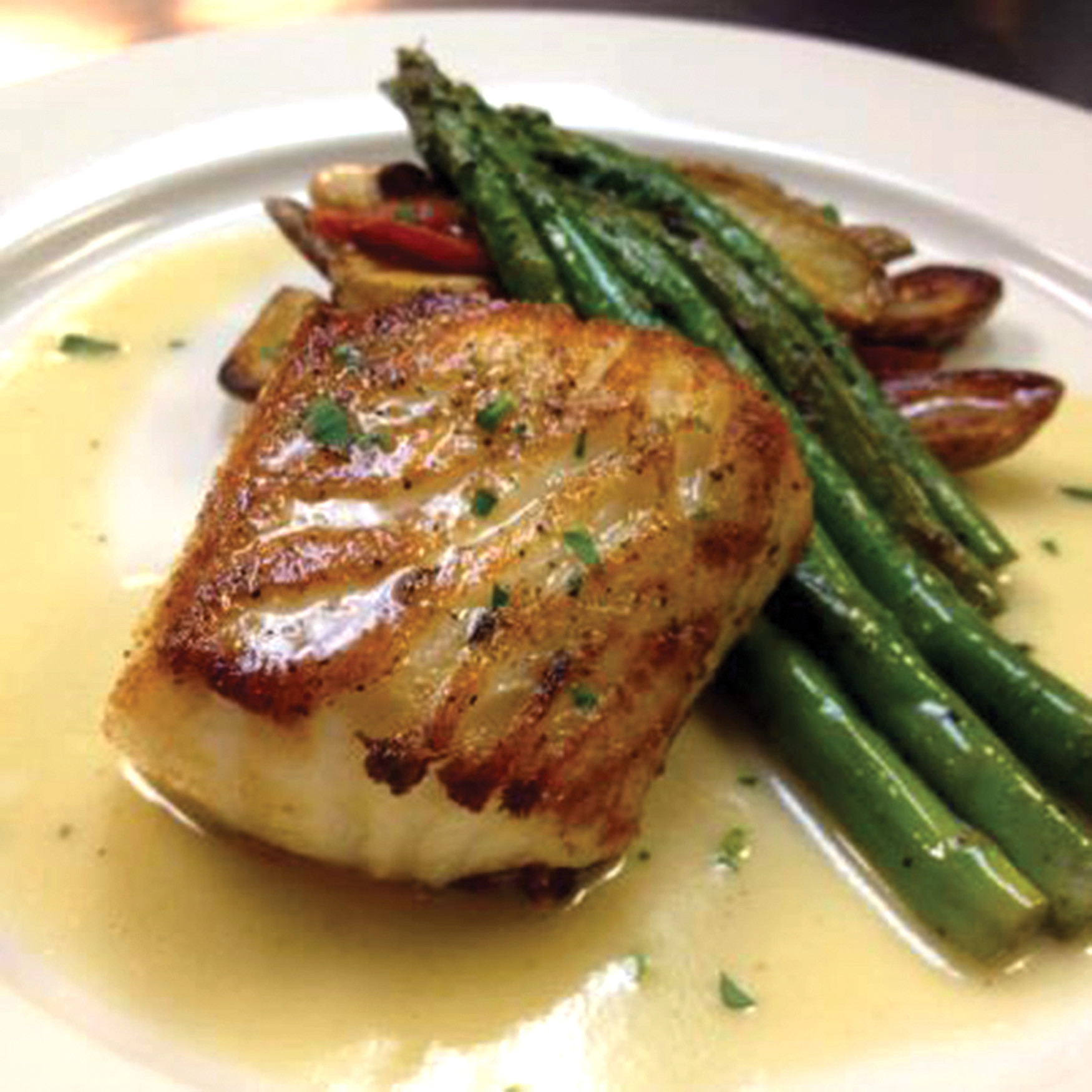 Terra in the Ortega/Avondale area serves local favorites such as fresh sea bass with beurre blanc.