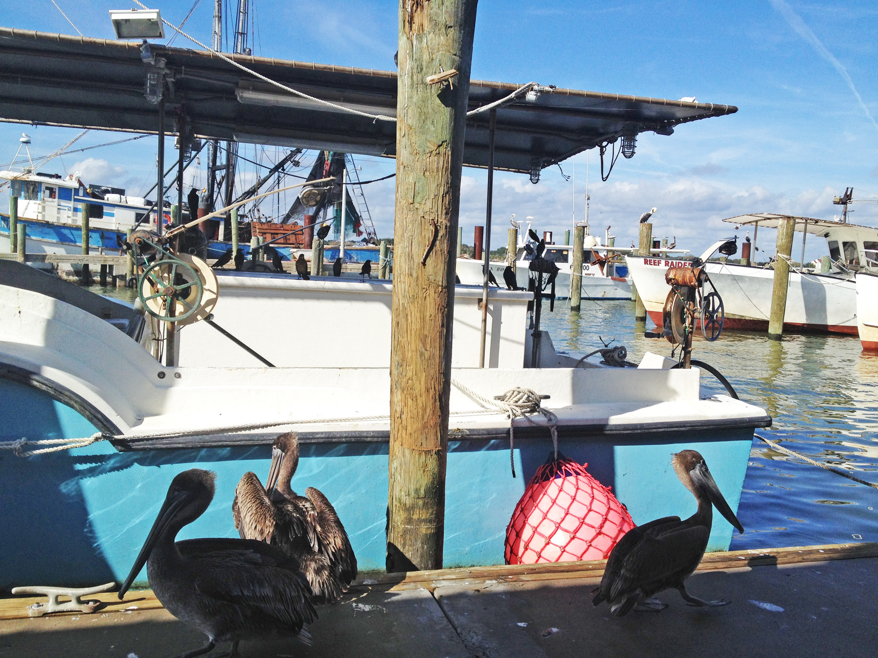 The outdoor deck offers waterfront seating, with great views of birds and boats.