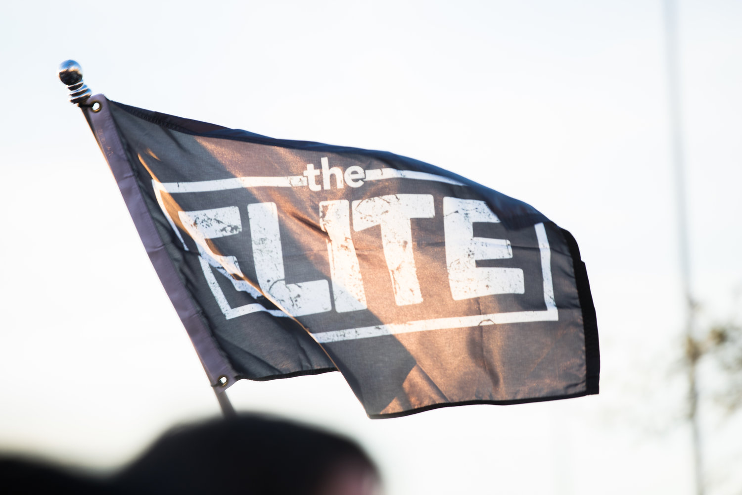 A wrestling fan waves the AEW flag
