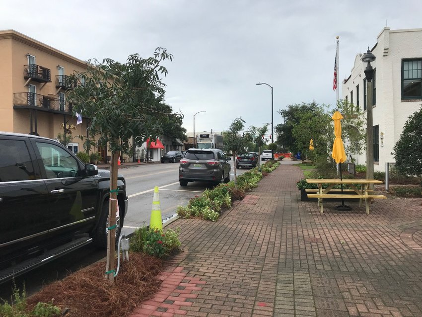 Chinese pistache trees on Section Street will be replaced with larger versions of the same variety.