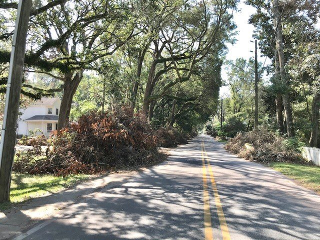 Debris from Hurricane Sally is placed along a street in Daphne.