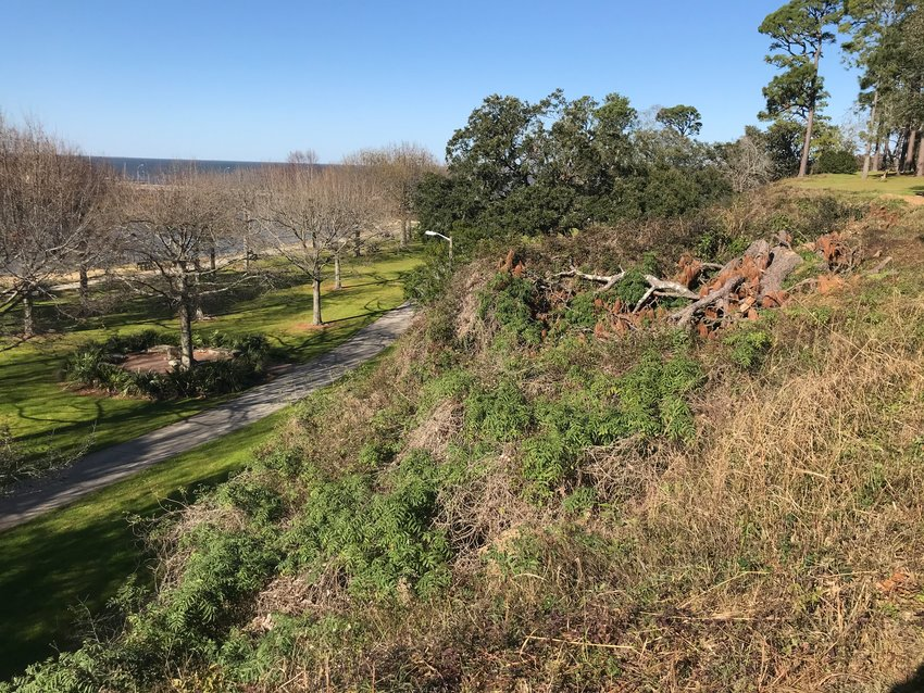 A new Working Waterfront plan proposed for Fairhope would not have terraces and other changes on the South Beach bluffs.