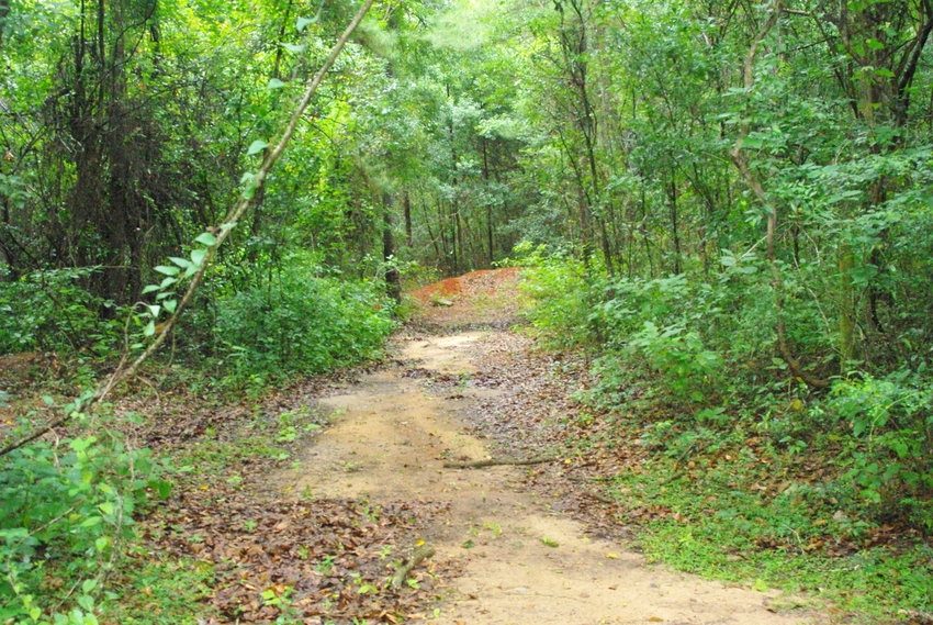 Fairhope is applying for a state grant to build a trail at the Triangle at a cost of $550,000.