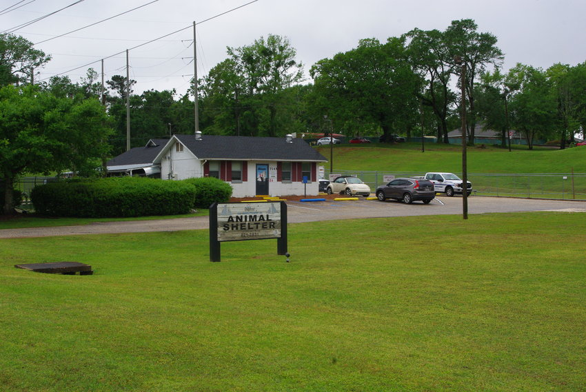 The city of Daphne is looking at plans to replace the city's Dr. Albert Corte Animal Shelter on Johnson Road.